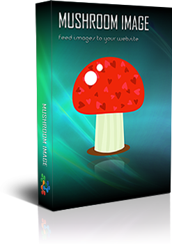 http://images09.interactivewebs.com/portals/0/banners/MushroomImageRendered_samll.png